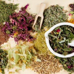 Лучшие травы при варикозе, для разжижения крови при варикозе вен и улучшения кровообращения в ногах
