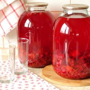 Домашние настойки из черноплодной и красной рябины
